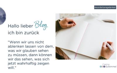 Hallo lieber Blog, ich bin zurück